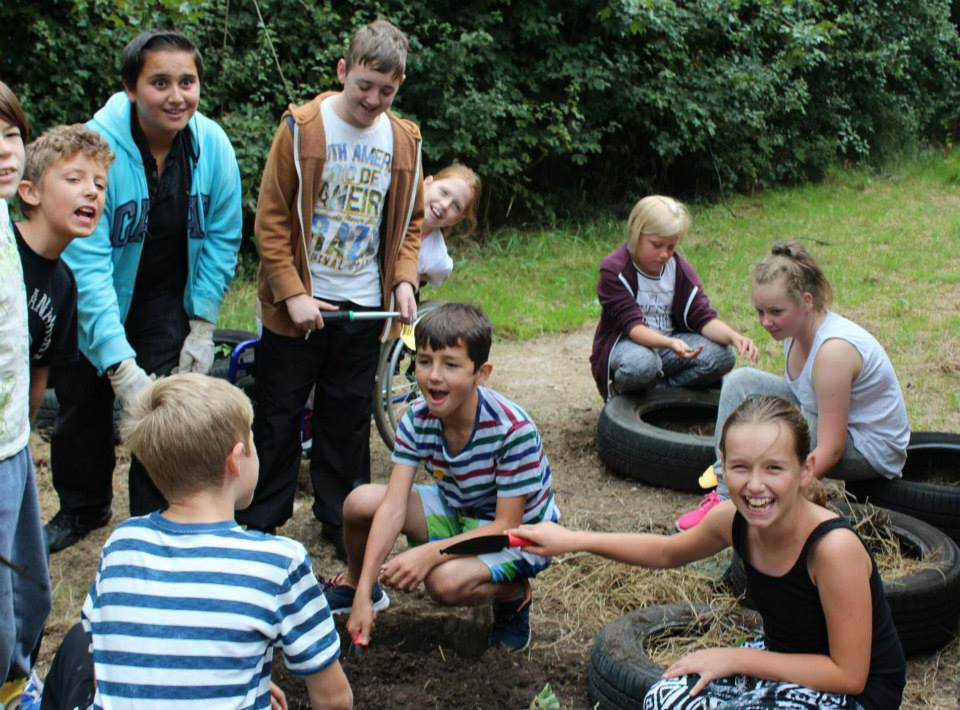 planting strawberries into recycled tyres