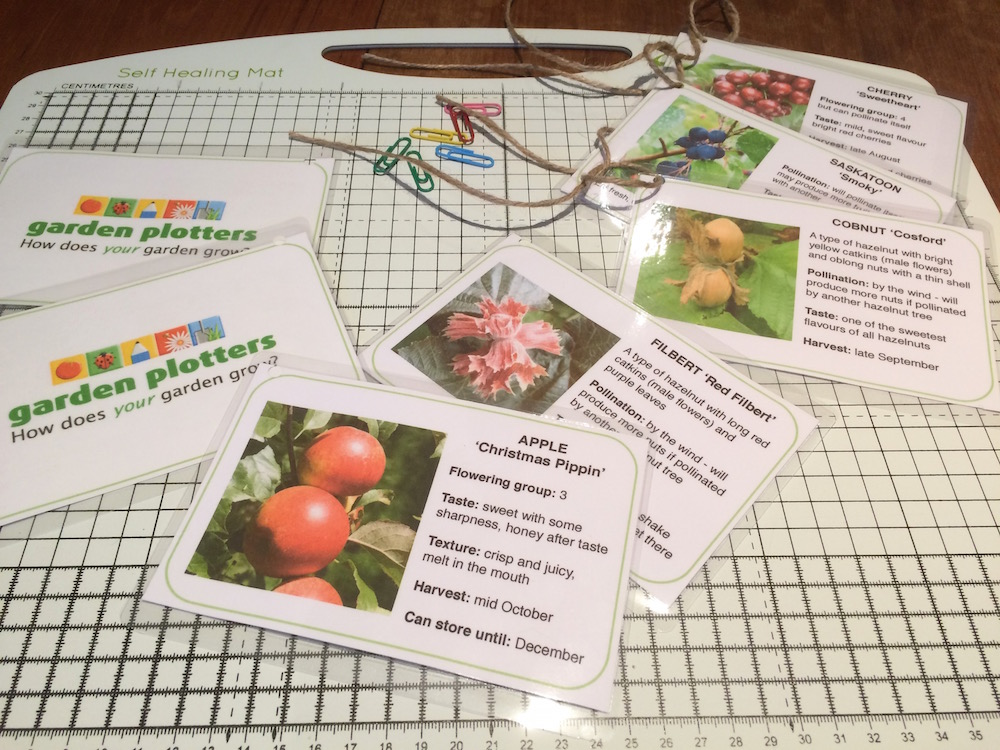 Fruit tree labels being prepared